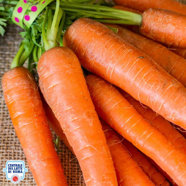 Carote, verdura *** Carrots, veggie #HealthyFood
