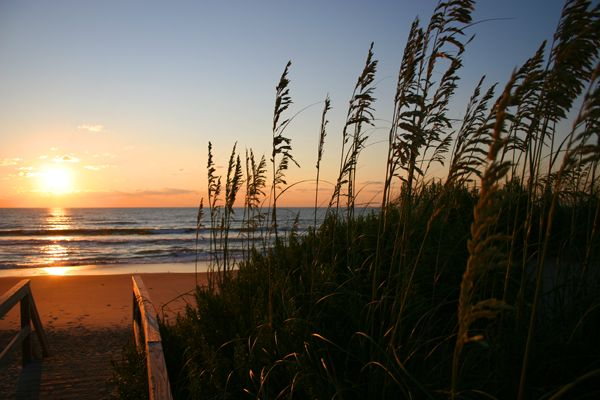 Nags Head, NC: Recipe Hair, Diy Hair, Art Outer, Outer Banks, Things Beachi, Hair Food, Outerbank, Nc Favorite Places To Visit, North Carolina