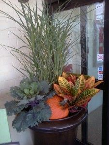 Plants to add fall color to your container garden with Stauffers of Kissel Hill Garden Center. www.skh.com