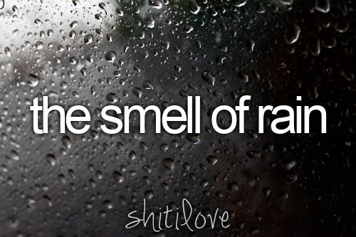 : Favorite Smell, Fresh Smell, Favorite Things, Girly Things, Favorite Moments, Smile, Girls Things, Shit, Justgirlythings Rain