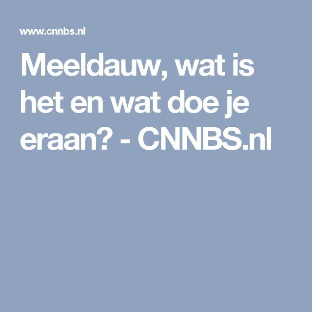 Meeldauw, wat is het en wat doe je eraan? - CNNBS.nl