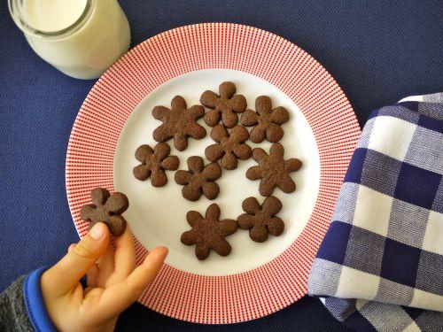 Chocolate Graham Crackers on Weelicious