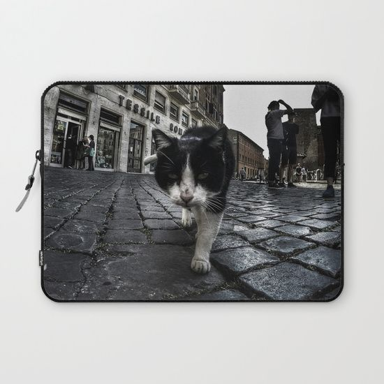 Close up portrait of a tough street cat in the city of Rome.  #cat #streetcat #animal #streetphotography #photography #gopro #wideangle #street #city #cityphotography #rome #italy #laptop #sleeve
