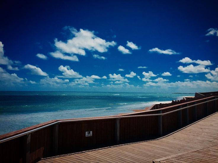 Where I'd Rather Be  #warrnambool#logansbeach#victoria#destinationwarrnambool#beach#bluesky#clouds#cloudscape#whalenursery#australia#ocean#instagood#escape#wandervictoria#seeaustralia#picturesque by annie_ace