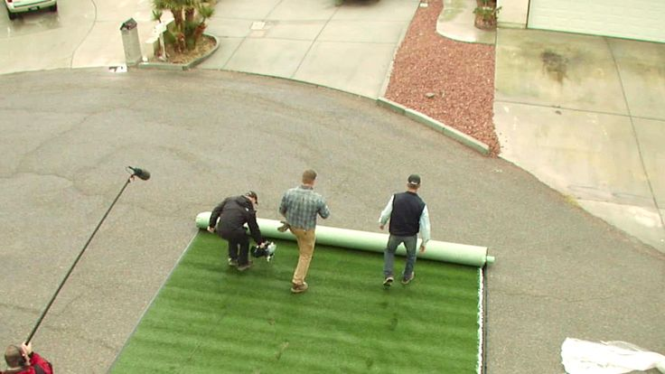 Landscaping Over Sand : Ideas about artificial turf on boxwood
