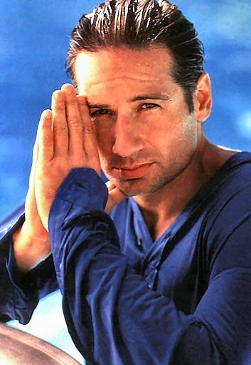 Google Image Result for http://wetmen.provocateuse.com/images/photos/david_duchovny_01.jpg