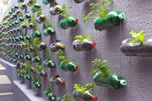 Ces bouteilles transformées en jardinières ponctuent ce mur d'une résidence. Plantes aromatiques et salades garanties toute l'année pour les résidents