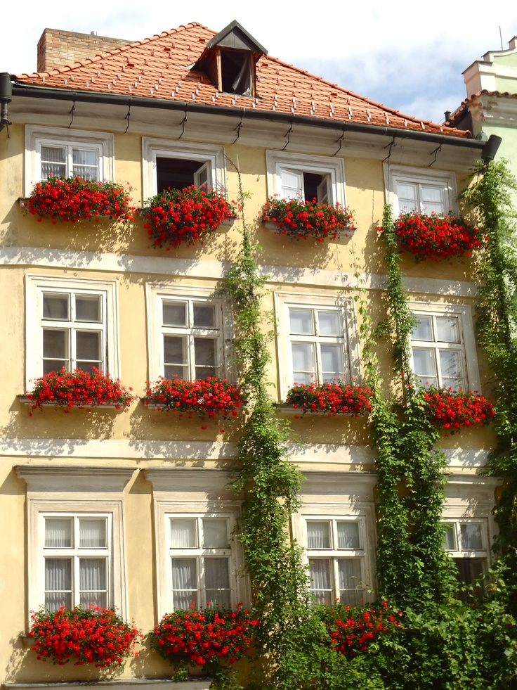 house with flowers.