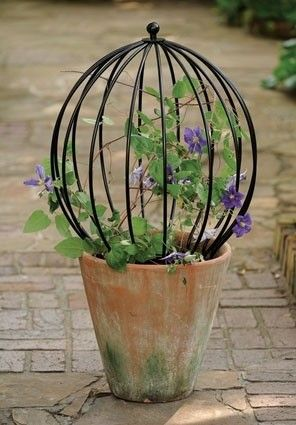 Neat topiary sphere to sit on top of a favorite pot