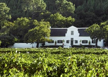 Rickety Bridge Wine Estate Franschhoek Wedding Venue- 5 minutes form La Clé des Montagnes- 4 luxurious villas on a working wine farm