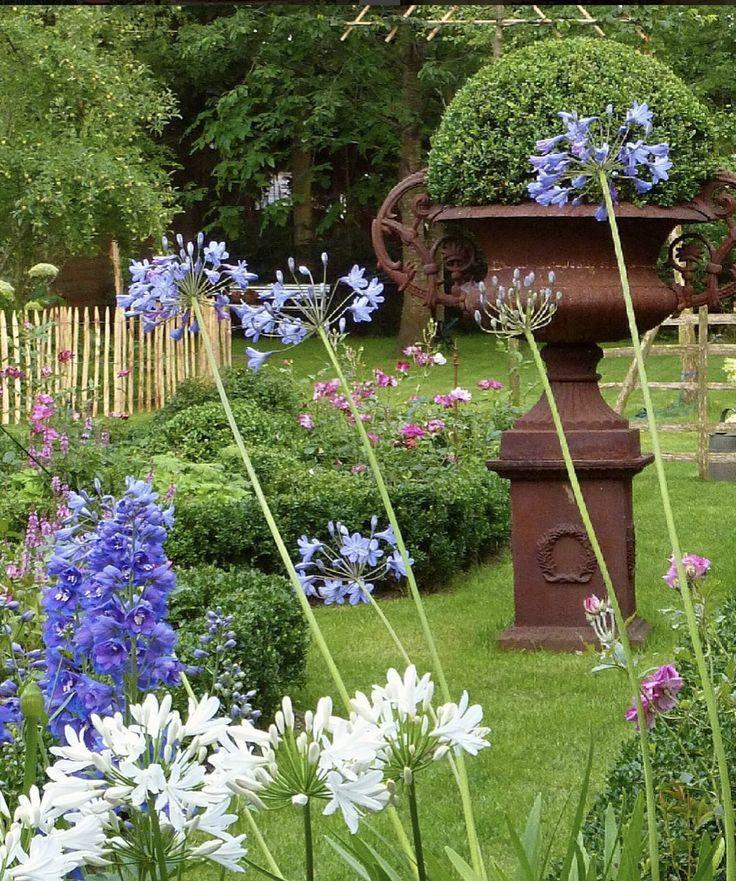 Pin By Julia Ayres Guerrieri On Garden Ideas In 2020