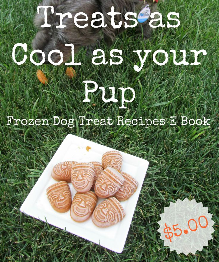 Best Selling Homemade Dog Treat Recipe Book