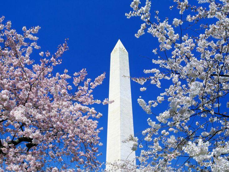 Washington Monument. Washington, DC.