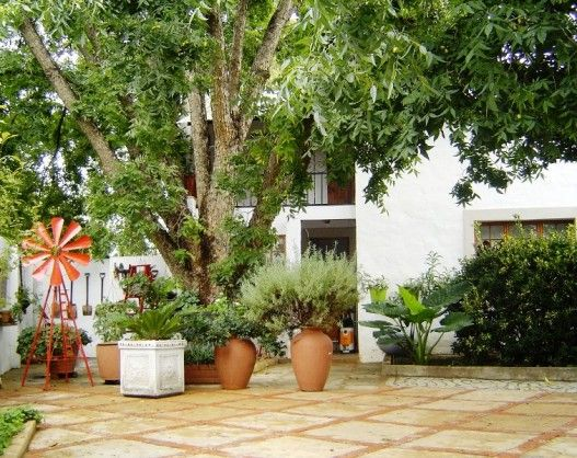 Birdshaven Guesthouse in Parys is a Pet-Friendly Self-Catering establishment in a quiet area with swimming pool. See More: http://www.where2stay-southafrica.com/Accommodation/Parys/Birdshaven_Guesthouse