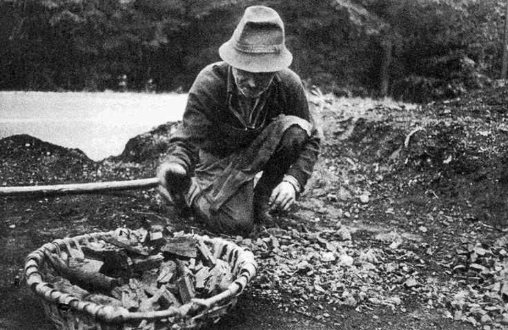 Faszén kosárba gyűjtése (Répáshuta 1976)