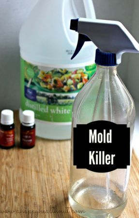 How to Make Mold Removing Spray
