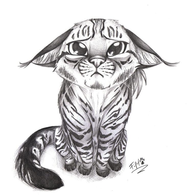 Sweet kitten drawing
