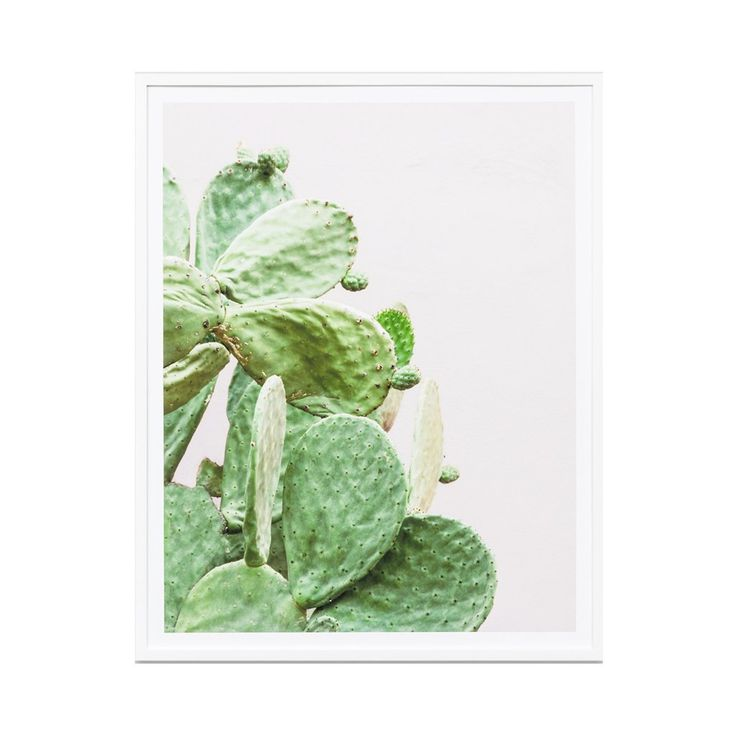 Prickly Pear – Jumbled