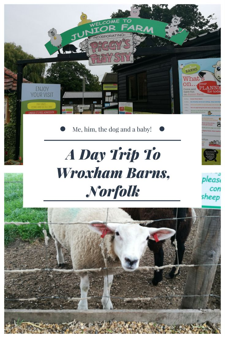 A Day Trip To Wroxham Barns, Norfolk - Me, him, the dog and a baby!