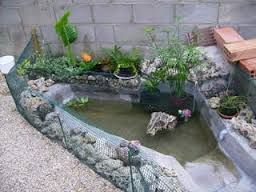 17 mejores ideas sobre estanque de tortugas en pinterest for Tortuguero casero