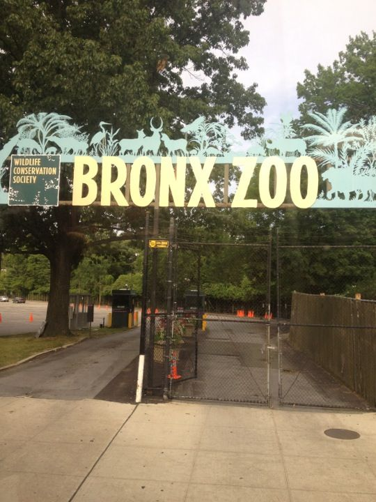 is bronx zoo open on july 4th 2012