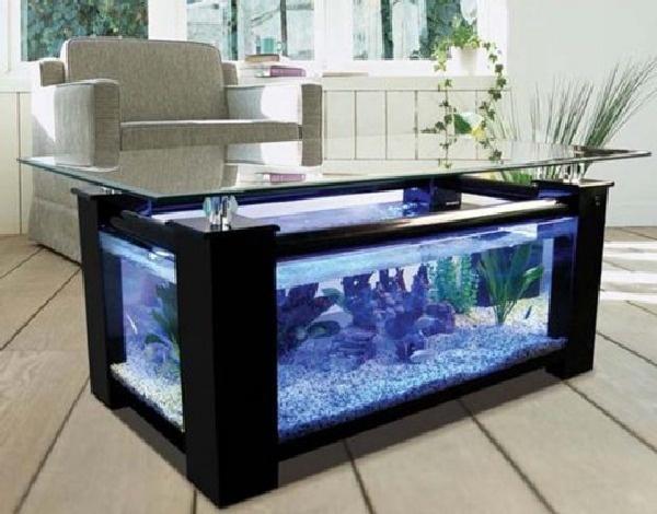 fishtank coffee table