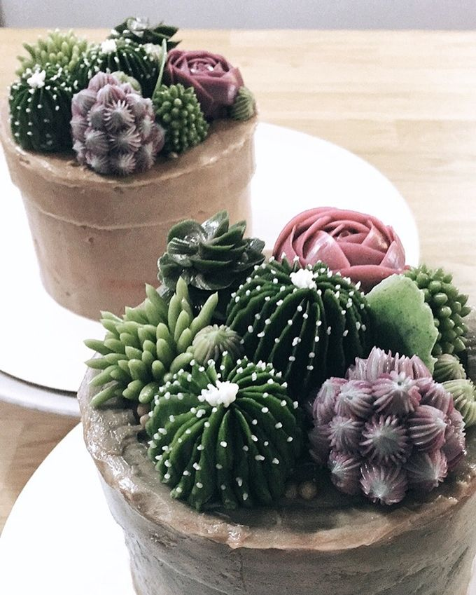 mini cactus pot cake