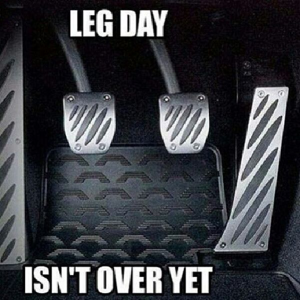 Leg puller quotes