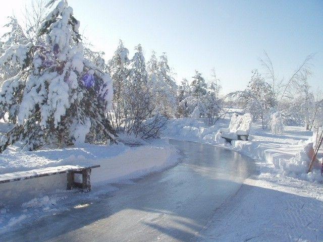 Le domaine de la forêt perdue: c'est une place merveilleuse proche de trois-rivière. À visiter! Pour le patin, les animaux et la tire d'érable!