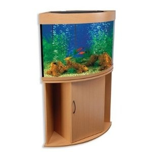 39 best images about aquarium stands on pinterest 55 for 55 gallon corner fish tank