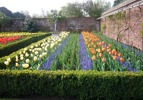 Festival of Tulips at Dunsborough Park