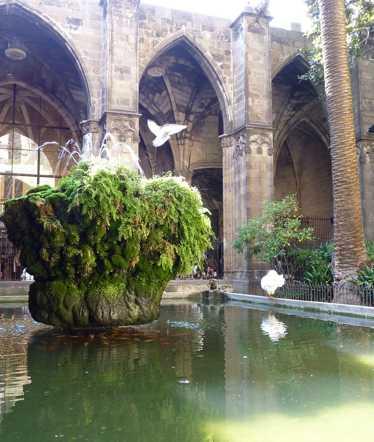 Cathedral Garden, Barcelona, Spain. I remember this Cathedral from childhood!
