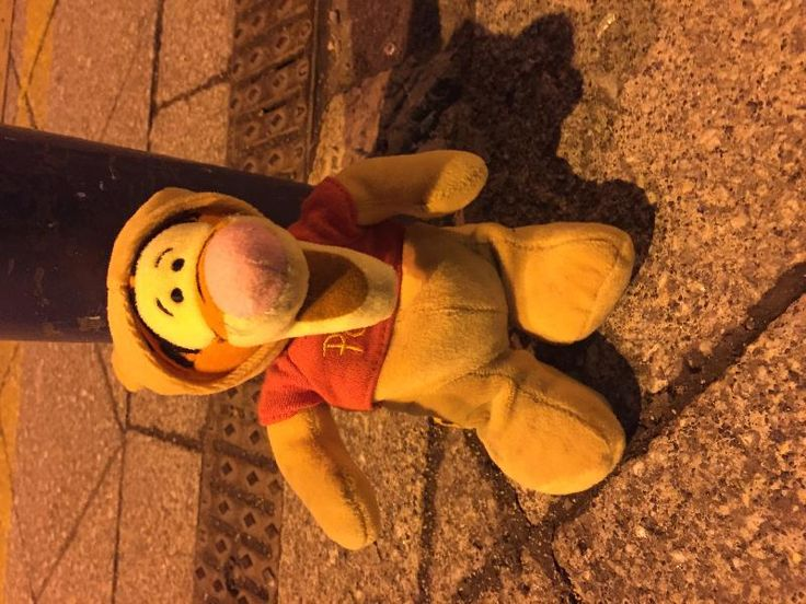 Found on 23 May. 2016 @ New Street Station, Birmingham UK. Found on platforms at the train station. Visit: https://whiteboomerang.com/lostteddy/msg/ino875 (Posted by Anthony Wilkes on 25 May. 2016)