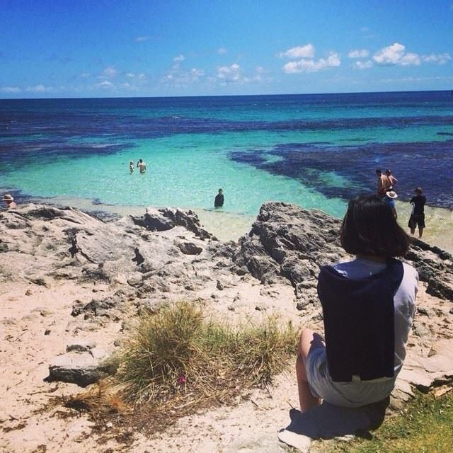 RT @RottnestIsland: Looking out over the brilliant blue ocean of Rottnest. Photo from porcelain.yu #rottnest