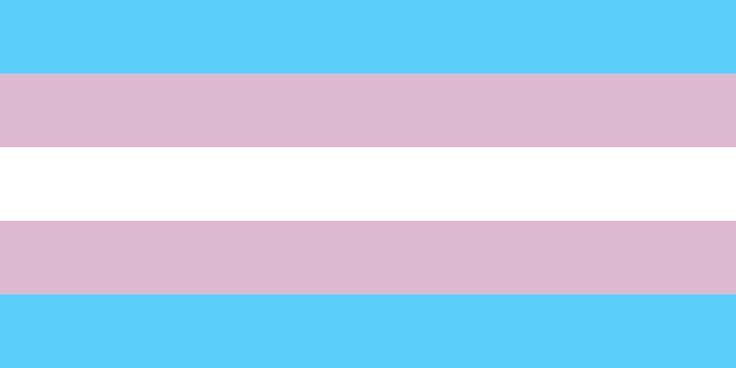 The Transgender Pride Flag. An estimated 900,000 Americans are transgender--about 100,000 more people than the population of San Francisco. They are not invisible. They are a beautiful and proud part of our society.