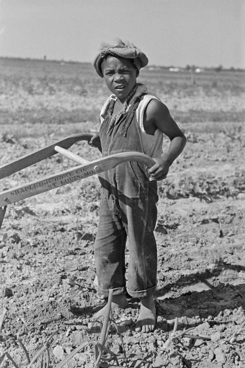 New Madrid County, Missouri. Child of sharecropper cultivating cotton, 1938. Russell Lee - Photographer