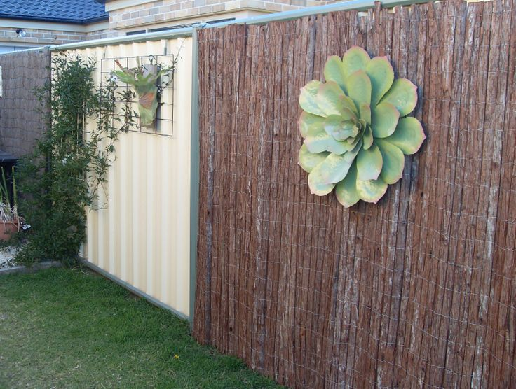Hang Heavy Devices, Vines, Screen Fencing Easily With This No Drill  Solution For Colorbond. Vertical GardensFencingDrillVinesBambooGarden ...