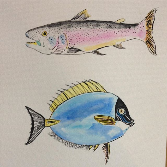 Unas rarezas. . . #fish #sketch #fisch #watercolorillustration #watercolor #illustration #ilustradoraschilenas