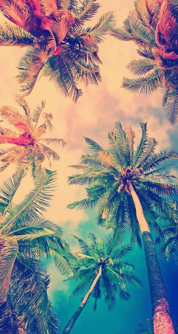 Cute trees. Summer. Vintege.