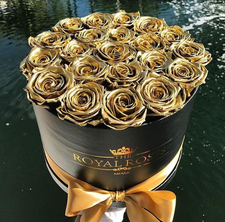 Flowers Golden Roses Blossoms Bloemen Flower