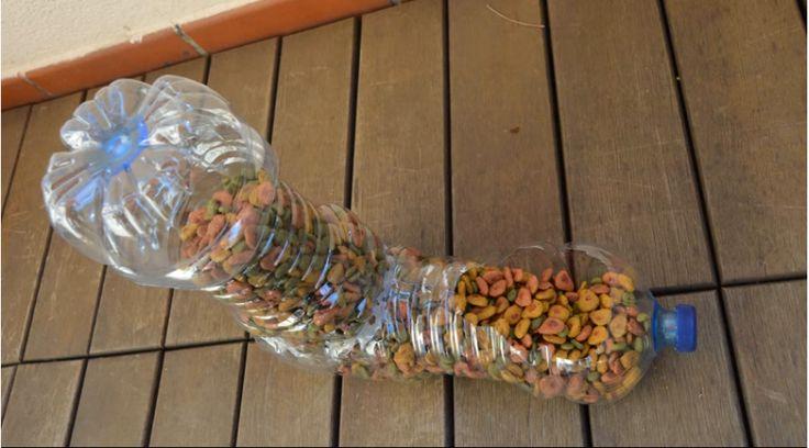 Siempre pensé en comprar un dispensador de comida para mi gato, el problema era el dinero.  Hasta que encontré una forma de reciclar y a la vez ayudarme con ese pequeño problema.