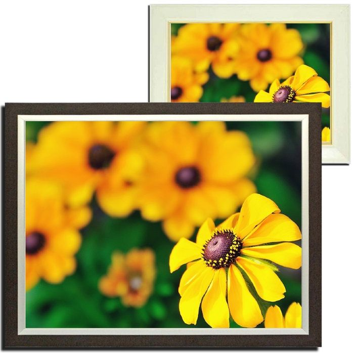 壁掛けアートアートパネル風景画フォトグラファーy2-hiro写真額縁付き黄色い花植物オレンジ緑自然母の日花ギフトインテリア雑貨キャンバスジグレー版画