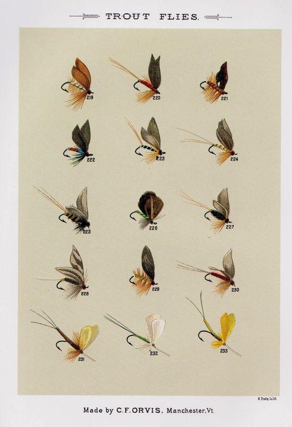 16 best p che sur le th me de images on pinterest for Fly fishing shop near me