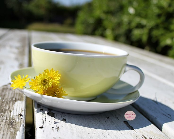 Falby Falbydesigndk coffee kaffe summer 2015 Havetssus