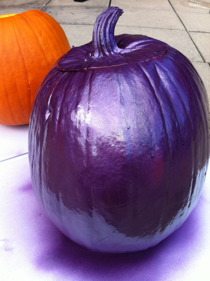 Purple Pumpkin Project... Paint Them Purple in November for Epilepsy Awareness Month!