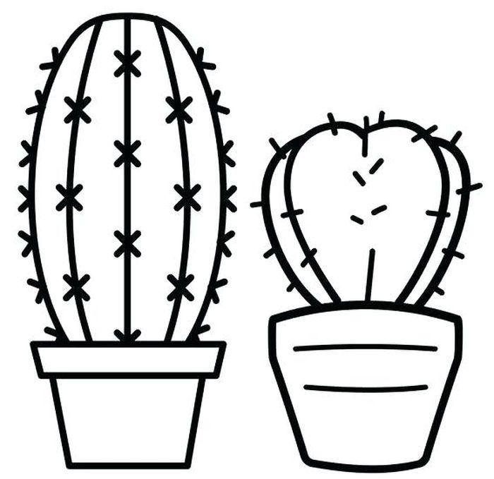 13 Best Succulent Cactus Coloring Books Pages Pattern