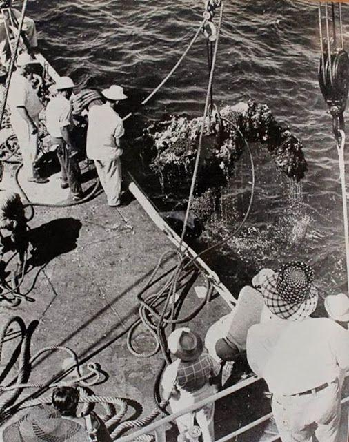 Las 15 Fotos históricas del rescate del antiguo Navío San Pedro Alcántara | El Navegao