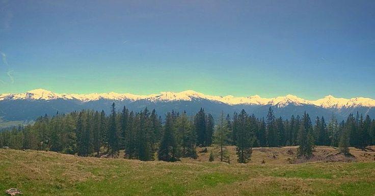 Eine meiner Lieblingstouren wenn auf den Gipfeln noch zu viel Schnee liegt: Auf selten begangenen Wegen aufs Walder Joch (1636m). Bei tollem Wetter heute eine spitzen Aussicht auf die Berge der Tuxer Alpen. #summitapproach #wandern #hiking #berge #mountains #tirol #tyrol #austria #alpen #alps #adventure #abenteuer #explore #outdoors #outside #wilderness #landscape #panorama #sky #blue by summitapproach