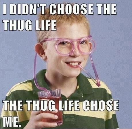 :DFunny Animal Videos, Thuglife, Funny Pics, Thug Life, Funny Pictures, Funny Stuff, Straws, Funny Kids, True Stories