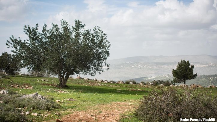 The Miracle of Modern Israel - Israel Today | Israel News